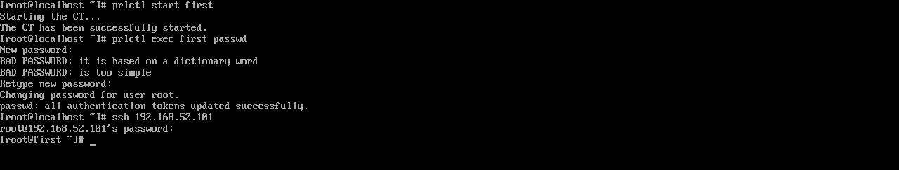 Рис. 3. Запуск виртуального сервера, изменение пaроля root и подключение по SSH