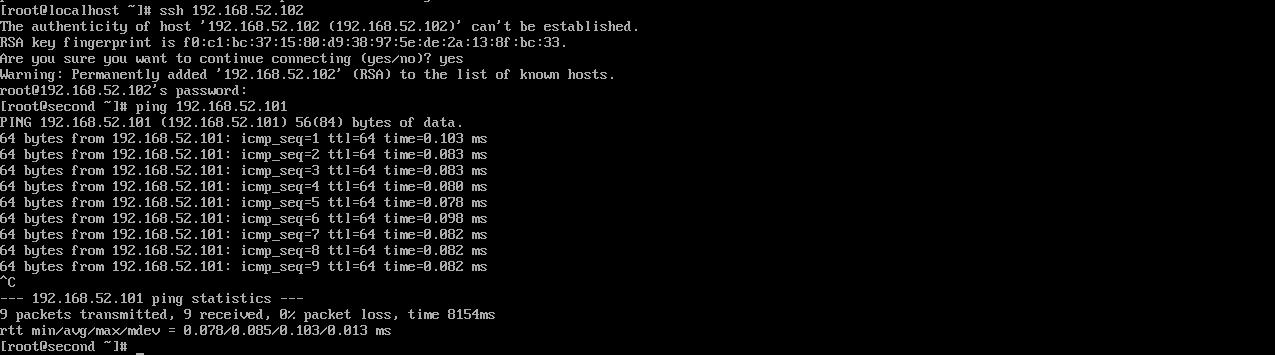 Рис. 6. Пинг с сервера second (адрес *102) сервера first (адрес *101)