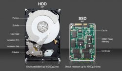Image result for ssd