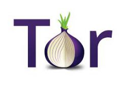 Картинки по запросу tor hosting