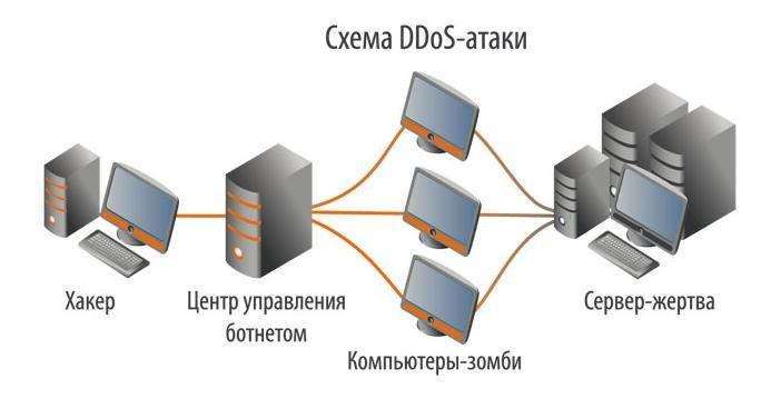 схема организации DDOS атаки